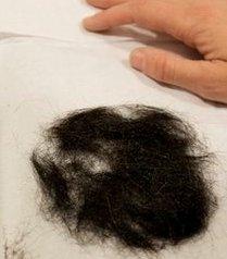 Рубашки и волосы Элвиса Пресли ушли с молотка
